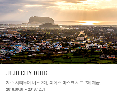 JEJU CITY TOUR